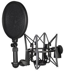 aksessyary-dlia-mikrofonov 2